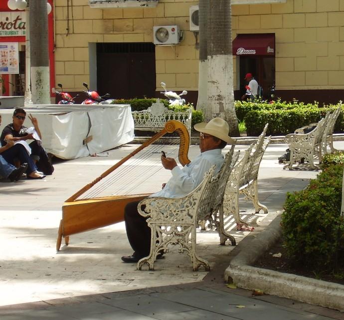 Harpist in Plaza
