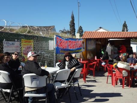 ChristmasChihuahua2014 028